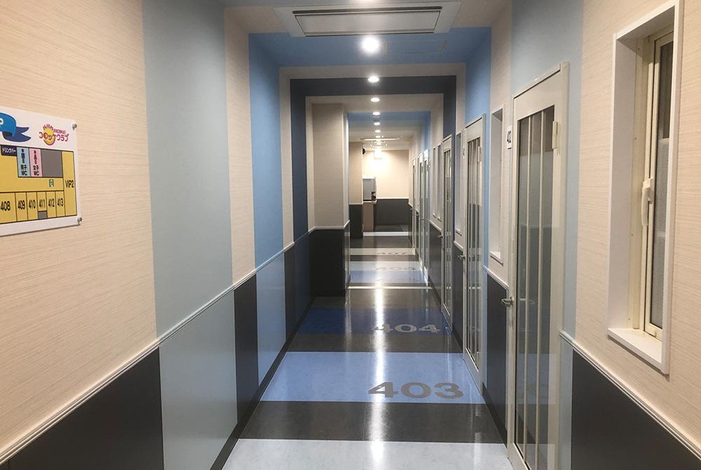 各フロアで廊下のデザインも違うから楽しいですよ